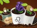 艺莎盆栽冰淇淋加盟官网,冰激凌/甜点/饮品/小吃加盟