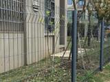 肇庆护栏网厂,护栏网价格,护栏网价格,球场围网