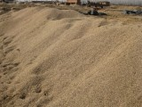 海濱廠家批發 烘干分目河沙 滑石粉 建筑鵝卵石 彩色石子