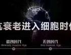 滋尔滨总部招商 王富民