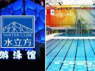 深圳游泳培训/游泳培训班/游泳培训中心