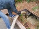 青岛城阳区清理化粪池.化粪池抽粪.化粪池清理.抽化粪池