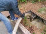 本溪县承接小区工厂医院学校化粪池清理 污水池清理 清洗管道