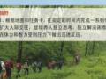 丹顶鹤保护区--- 暑期夏令营