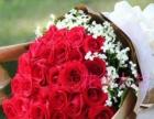 订鲜花开业花篮绿植 鲜花礼盒