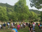 环太湖捷安特美利自行车出租,徒步,团建活动,骑行