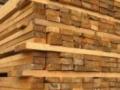 高价上门回收木材、旧 木方模板、原木