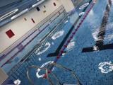 廣州荔灣區專業游泳池廠家直供品質保證水育池游泳池.