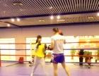 专业现代武术,散打,跆拳道等体能培训,就在园博园哼哈体育