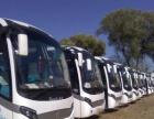 专业提供商务车,中巴车、大巴车、包车、旅游班车