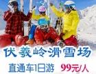 伏羲岭滑雪一日游 99元