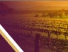 乐朗葡萄酒有限公司加盟 名酒