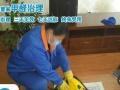 新房除甲醛 测甲醛 室内空气治理 去除油漆味