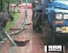 黄埔专业清理化粪池 高压车清洗疏通管道