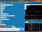 网页金融直播系统开发制作