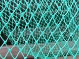 厂家生产批发养鸡尼龙网、尼龙网、养殖网