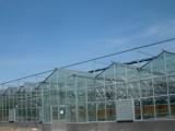 玻璃温室工程