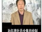 孙钰德花鸟写意牡丹教学光盘50讲8DVD