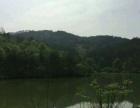 山林400亩包含小型水库转让50年经营权