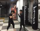 武术散打 拳击 泰拳 自由搏击 柔道 截拳道