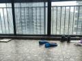 朝南大次卧大阳台带电梯 温馨如家 阳光充足 干净卫生 手慢无