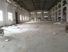 带牛腿可分租)沧江工业园杨和工业区900方标准厂房出租