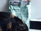 比瑞吉泌尿道成猫粮2kg