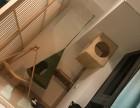 福州猫咪寄养,独立超大公寓,提供24小时监控