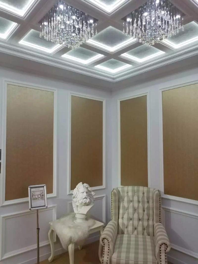客厅/书房/卧室/儿童房装修首选竹木纤维集成墙面吊顶板