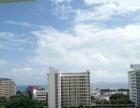 玉海国际度假公寓 三亚湾唯一温泉小区 1房精装 短租房源