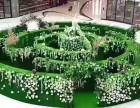 上海鹰枫镜艺系列蜂巢迷宫镜子迷宫福字迷宫绿境迷宫出租出售