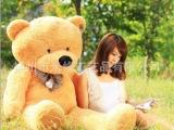 工厂店 1米林嘉欣毛绒玩具大熊公仔 大号泰迪熊大抱熊抱枕 招代理