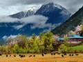 2017年川藏线+尼泊尔自由行约伴啦!