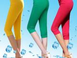 2015夏季韩版糖果色纯色梭织布高腰七分九分女式打底裤铅笔裤批发