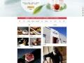266元建站=空间+域名+推广+微信营销+手机网站