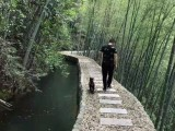 桐庐芦茨湾包吃包住 杭州周边农家乐