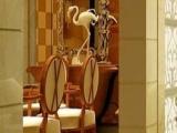 鸿创陶瓷 鸿创陶瓷加盟招商