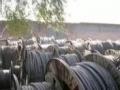 高价回收废铜,高价回收废旧电缆