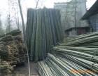 北京竹篱笆哪里有定做竹竿的
