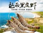 越南黑虎虾预售