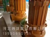辰龙出厂价供应污水泵配件常见故障及维修标准