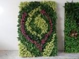 北京植物墻定做仿真植物墻廠家