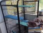猫笼转让(送猫砂盆,猫砂)