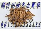 北京哪里回收东阿阿胶回收冬虫夏草,回收关东参燕窝