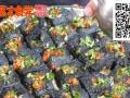 正宗罗家臭豆腐技术培训加盟技术培训 制作方法