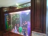 风水鱼缸、生态鱼缸、酒店海鲜鱼缸量身定做