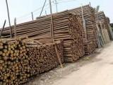 长期出售唐山优质6米高压线防护杉木杆-腾福竹木