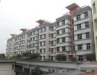 广东东莞塘厦三正世纪新城一房一厅出售