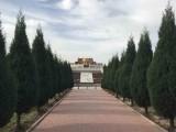 常山陵园公墓能使用多少年目前一块墓地价格贵吗