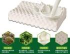 进口泰国乳胶枕头如何享受零关税/报关行
